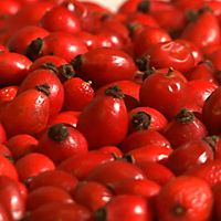 Cooking with Rose Hips - Rose Hips Recipes  Lots of recipes and info