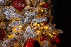 Kerstboomverlichting voor buiten en binnen koop je bij Gadero. Kies uit standaard ricelights warm white LED lampjes tot speciale grote diamant kerstverlichting voor je kunstkerstboom of echte kerstboom. Tevens vind je hier microverlichting voor je houten kerstboom. Je wilt bijzondere lichtjes met kerst? Bekijk dan onze LED kaarsverlichting. Ook de partylights zijn ideaal voor het versieren van uw kerstboom of overkapping. #kerstverlichting Christmas Tree, Holiday Decor, Home Decor, Teal Christmas Tree, Decoration Home, Room Decor, Xmas Trees, Xmas Tree, Christmas Trees
