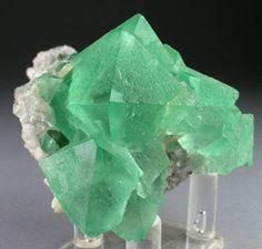 Superb Mint Green Fluorite Octahedral Crystals w Quartz Riemvasmaak s Africa | eBay