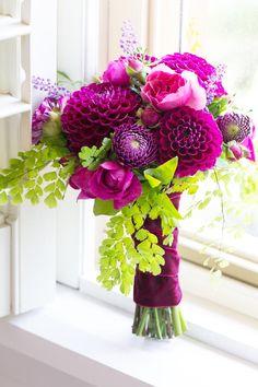 Pretty fuschia colored flowers