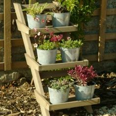 Would be great for growing herbs. Herb Planters, Herb Pots, Plant Pots, Outdoor Plants, Outdoor Gardens, Garden Plant Stand, Small Herb Gardens, Wooden Plant Stands, Herbs Indoors