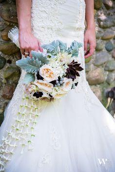 garden rose bridal bouquet: white o'hara garden roses, silver brunia, white scabiosa, blushing bride protea, chocolate cosmos, stephanotis, succulents and dusty miller