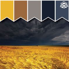 Pastel Feather Studio STORMY FIELD - color palette