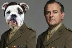 #DowntonAbbey as Dogs