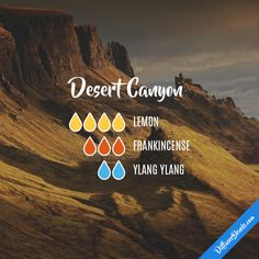 Desert Canyon - Essential Oil Diffuser Blend