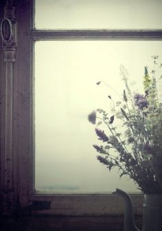 Les plus beaux voyages sont ceux qu'on fait par la fenêtre.