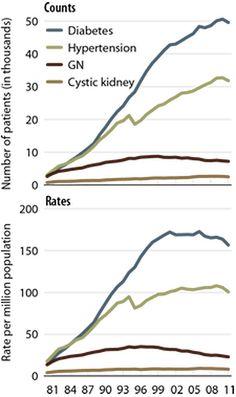 16 Best Diet in Kidney Disease images | Kidney disease, Diet, Dash ...