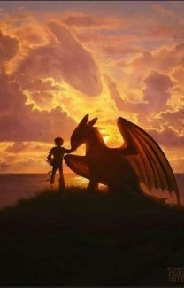 ideas how to train your dragon memes night fury for 2019 How To Train Dragon, How To Train Your, Httyd Dragons, Toothless Dragon, Hiccup And Toothless, Dragon Memes, Dragon Trainer, Night Fury, Dragon Art