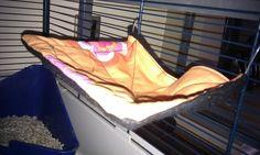 Wired hammock for Samantha(my hamster)