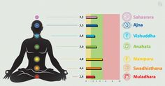 VedaPulse™ scans the chakras as tied into the HRV Heart Rate Variability. Discover more at http://thehipgurusguide.com/training-programs/vedapulse-cutting-edge-east-west-technology-research-tool/