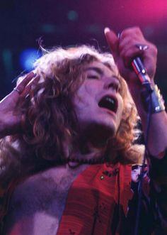Just Led Zeppelin