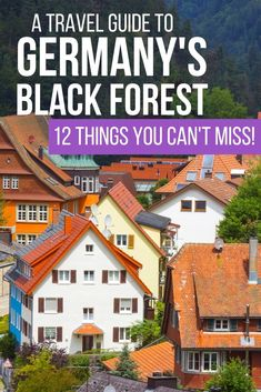 So much more than cake and ham, a trip through Germany's mystical Black Forest is surely an experience you'll never forget. Europe Travel Guide, Travel Destinations, Travel Guides, Amazing Destinations, Holiday Destinations, Travel Tips, European Destination, European Travel, Best Places To Travel