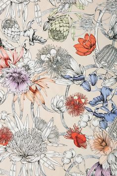 Discover unique wallpaper at Anthropologie, from printed wallpaper to floral wallpaper and more. Surface Pattern Design, Pattern Art, Print Patterns, Floral Patterns, Botanical Art, Botanical Illustration, Digital Illustration, Fantasy Illustration, Motif Floral