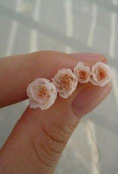 ミニチュア バラ