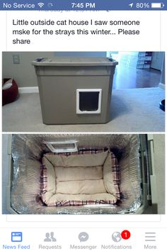 Make a homemade cat condo for outdoor or stray cats this is a DIY safe house for stray cats in winter. You can make a difference in a cats life. Feral Cat Shelter, Feral Cats, Cat Shelters, Feral Cat House, Diy Pour Chien, Outside Cat House, Niche Chat, Chesire Cat, Outdoor Cats