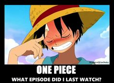 There are too many episodes of One Piece to even remember!