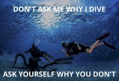 We are a community of scuba divers who believe the ocean is big enough for everyone. Plus-size and other disenfranchised divers find a home here. Scuba Diving Quotes, Deep Photos, Ocean Underwater, Architecture Life, Cave Diving, Marine Biology, Motto, Life Is Good, Adventure