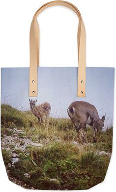 Alpine Chamois II tote (leather) by Amazon Queens. $90 from http://printallover.me/collections/amazon-queens