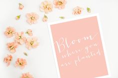 Spring Printable - Bloom Where You Are Planted!