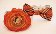 Orange Dog Collars  2 Chic Wedding Dog Collars by LADogStore, $54.50