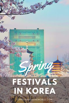 Spring is the perfect season to visit South Korea. Spring festivals in Korea are great way to experience the Korean culture, enjoy nice weather and make some memorable photos.