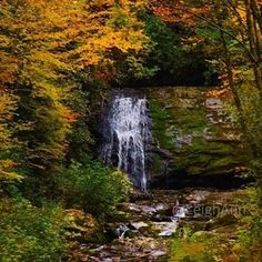 Beautiful colors can be found throughout the mountains during autumn. Photo by @lskoch5. #gsmnp #brysoncity #fall #fallcolors #autumn #waterfall #nationalpark #smokymountains #ncfalloffame