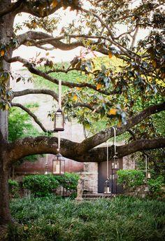 Yes to lanterns in trees // Studio 1250