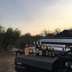 That's how happy hours are on safari ! // Magnifique apéritif pendant le safari #tingalodge #ailleursisbetter