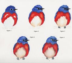 Five steps to paint an adorable fluffy bluebird! Painting is about applying values and blending. Drawing Templates, Blue Bird, Rooster, Birds, Drawings, Animals, Painting, Animales, Animaux