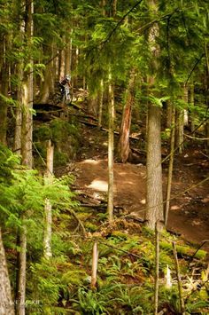 Mountain Biking Photo Contest Mtb Photography Challenge