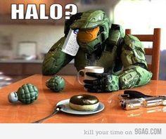 Halo???