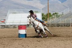 Aggressive Aids' Effects on Barrel Racing Horses Studied  must read!!!