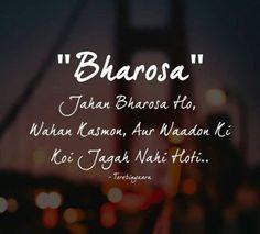 🍁 true