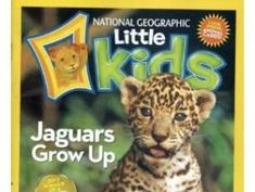 17 magnificent magazines for kids | www.savvysource.com