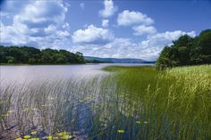 Fermanagh Lakes, Northern Ireland--Homeland of the McGuires. . .