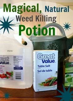 WEED KILLER - gallon white vinegar cup of salt 2 Tablespoons of dishwashing liquid Mix it all together & put in a sprayer or watering can. An all-natural weed killing solution that works on just about anything. You've got to try this one! Weed Killer Homemade, How To Make Homemade, Organic Homemade, Limpieza Natural, My Pool, Outdoor Projects, Diy Projects, Backyard Projects, Permaculture