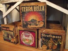 Vintage Sunkist Fruit Crates
