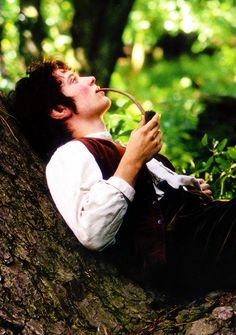 15/100 pictures from The Lord of the Rings  I've always loved this image. It's one of the last times that Frodo is like a regular, care-free Hobbit