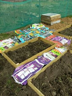 Using empty compost bags to cover the ground around the raised beds before covering with wood chip to stop the weeds getting through