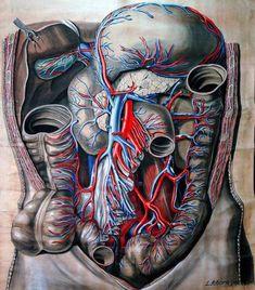 9 sintomi che indicano una sindrome da intestino permeabile - Ambiente Bio