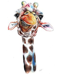 """Shop the prints of the original goofy watercolour giraffe """"Patchwork"""" by artist Abigail Leigh, available in a range of sizes. Colorful Animal Paintings, Colorful Animals, Giraffe Painting, Giraffe Art, Watercolor Animals, Watercolor Paintings, Watercolour, Giraffe Tattoos, Safari Animals"""
