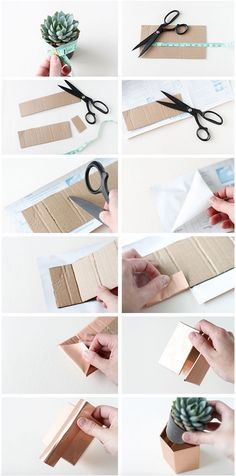 Contact Paper & Cardboard Plant Pot Covers