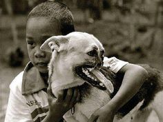 The Story of Kabang: the Hero Dog of the Philippines Who Lost Her Snout | Outdoors