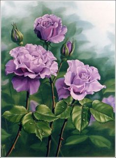 ANGEL FACE ROSES - oil painting by Judy Sleight