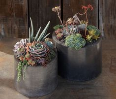 Great pots from Flora Grubb Gardens