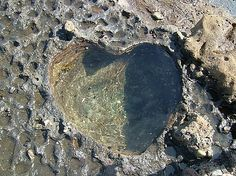 A love heart rock pool at Pebbly Beach, Batemans Bay, Australia.
