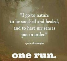 Running Matters #148: I go to nature to be soothed and healed, and to have my senses put in order. - John Burroughs