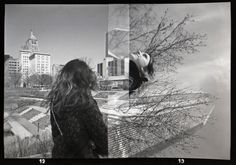 Y. Perez...student example...Holga Camera....120 film 120 Film, Holga, Louvre, Student, Building, Travel, Viajes, Buildings, Destinations