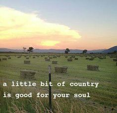 Love the smell of fresh cut hay, grass, the fall air, the cooler morning, the dewy field, the horses, cows, goats, pigs. Ahhh, my life 100.
