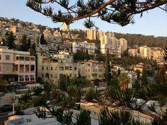 Haifa.Palestine